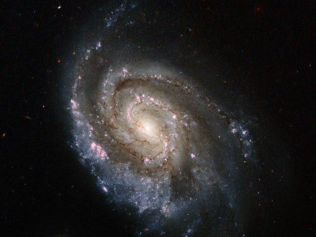 Stellar explosions in NGC 6984